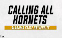 Calling All Hornets graphics